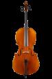 Studie cello hoge klasse 7/8 1