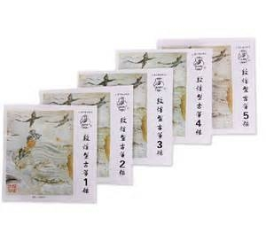 Guzheng snaren 1-5